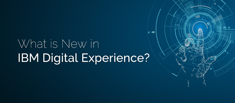 IBM Digital Experience