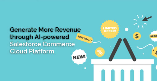 Salesforce Commerce Cloud Platform