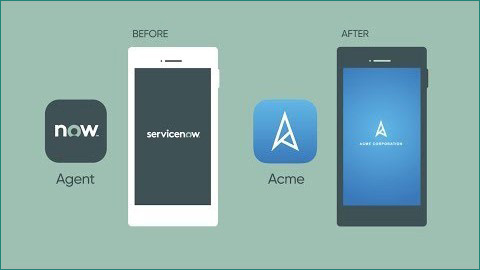 Custom mobile branding with servicenow v9