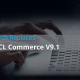 Elastic Search Hcl Commerce