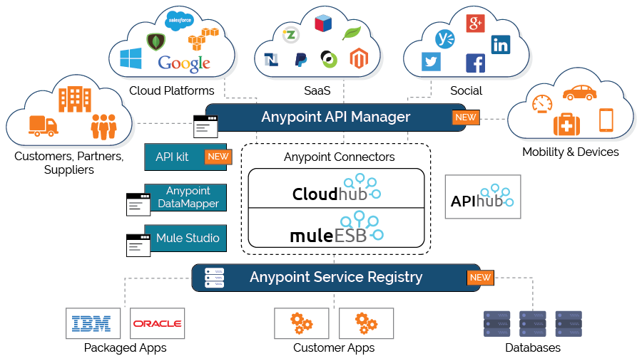 Smart and Strategic Integration with MuleSoft API
