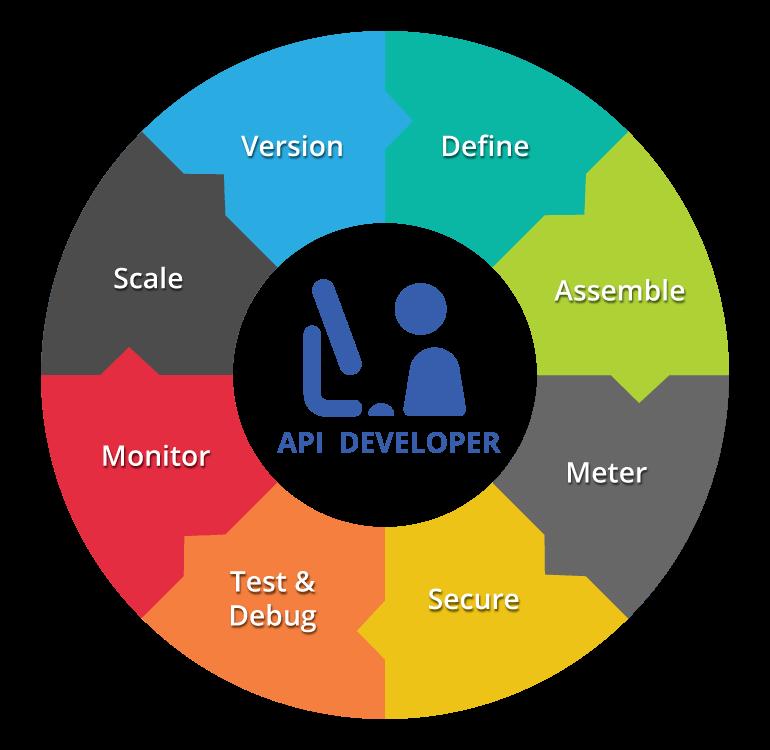api-developer