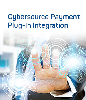 Payment Plug-In-Integration