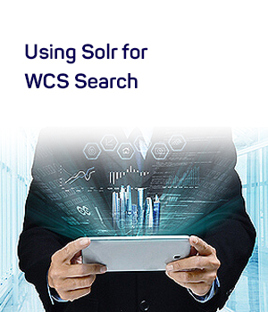 Solr for wcs search