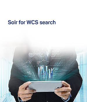 Websphere Commerce Search
