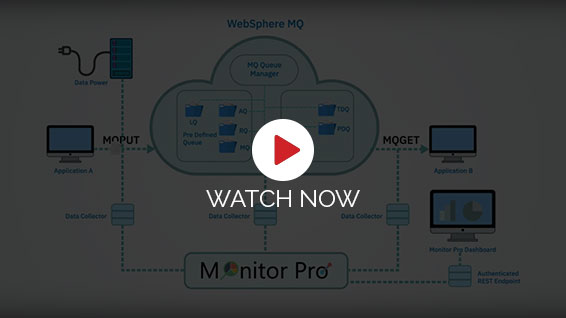 MQ Monitorpro Video