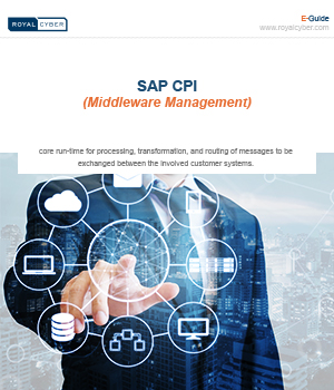 sap middleware management