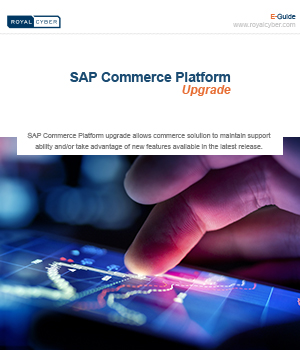 sap commerce platform