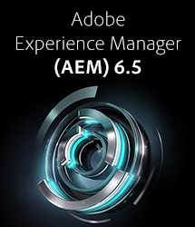 Adobe Experience Manager 6.5