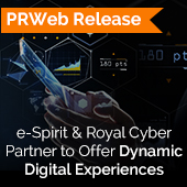Dynamic Digital Experiences