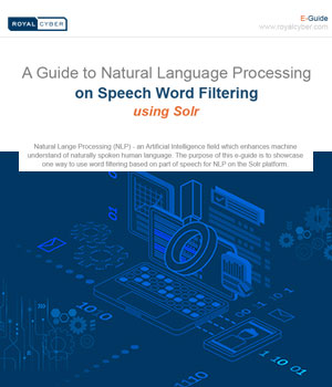 A Guide to Natural Language Processing guide